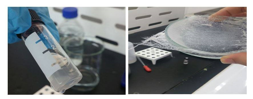 summer-research-lab