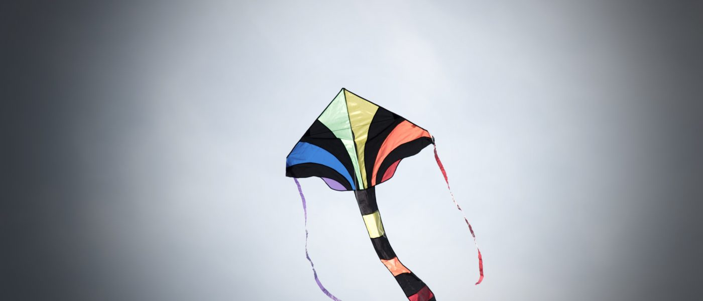Kites have no need for designated parks.